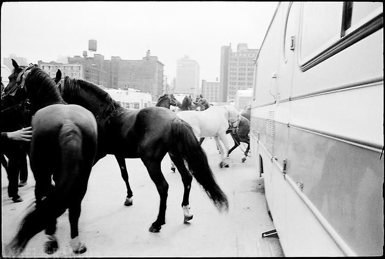 Circus, 1976