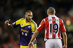 120214 Stoke City v Swansea City
