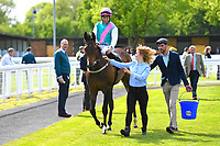 Winner of The Smith & Williamson Fillies' Novice Stakes (Class 5) Sun Maiden ridden by Pat Dobbs and trained by Sir Michael Stoute is led into the winners enclosure during Afternoon Racing at Salisbury Racecourse on 17th May 2018