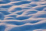Winter, Schnee, Gamprin, Rheintal, Rhine-valley, Liechtenstein.