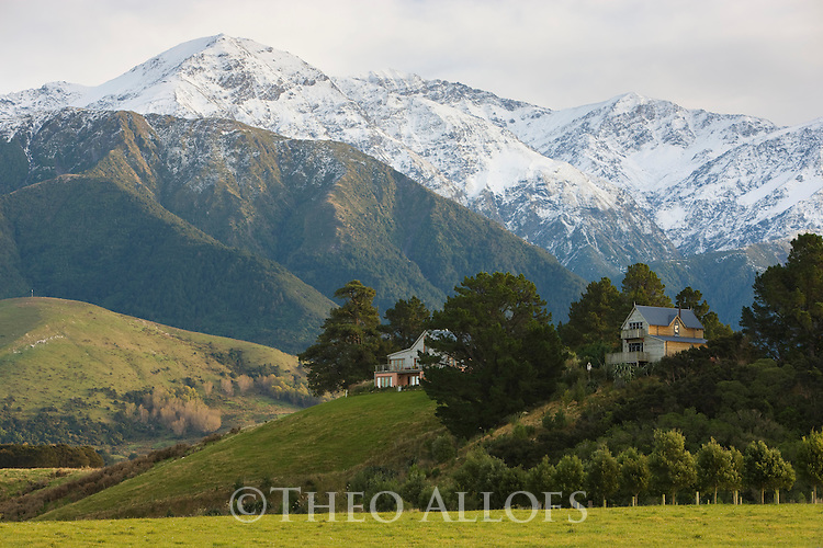 Farm houses on hills in front of Kaikora Range north of Kaikora, South island, New Zealand