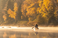 &quot;Autumn Morning Paddle&quot;<br /> <br /> A canoeist enjoys paddling through the tranquility of autumn morning gold.