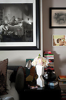 Artfully piled books, pictures of dogs, and shapely vases frame the bed, upholstered in a plush grey fabric