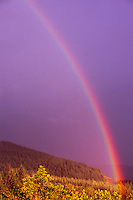 Rainbow, Mt. St. Helens National Volcanic Monument, Washington, US