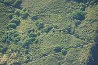 Trail on the western side of Waipio valley The Big Island of Hawaii, Pacific Ocean