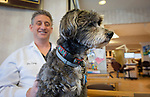 MILFORD,  CT-031819JS16- Dr. Gary Opin, with Opin Wide Orthodontics in Milford, sits with Cooper, one of two dental therapy dog in their office on Monday. Cooper and Lucy may be the only dental therapy dogs in the state. <br /> Jim Shannon Republican American