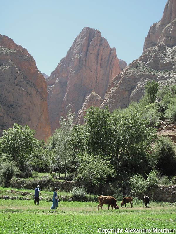 Morocco, Taghia village, Atlas mountain
