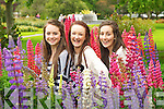 Pictured at the Tralee Flower Festival on Saturday, from left: Sophie Cleary, Claire Shanahan and Jenny Godley..