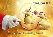 CHIARA,CHRISTMAS ANIMALS, WEIHNACHTEN TIERE, NAVIDAD ANIMALES, paintings+++++,USLGCHI522,#XA# ,funny ,funny