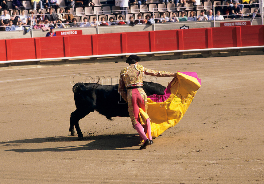 Bullfighter taunting a bull with his cape