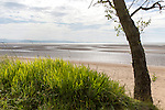 Beach at low tide, Swansea Bay, Swansea, South Wales, West Glamorgan, UK
