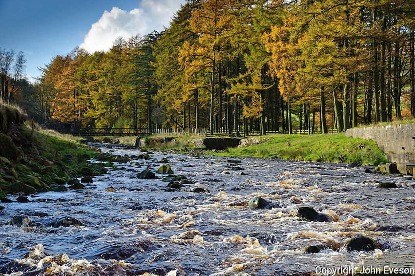 Autumn at Langden Brook at Sykes, Dunsop Bridge, Lancashire in the Forest of Bowland.