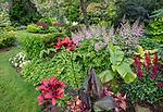 Vashon Island, Washington: Summer perennial garden featuring lilies, astillbes and banana tree