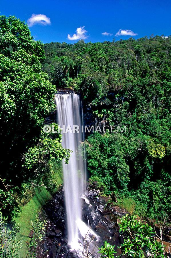 Cachoeira no Vale do Itajaí em Santa Catarina. 1996. Foto de Stefan Kolumban.