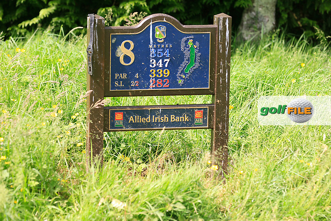 The 8th tee during Round 1 of the Leinster Seniors Amateur Open Championship at Enniscorthy Golf Club on Tuesday 23rd June 2015.<br /> Picture:  Thos Caffrey / www.golffile.ie