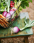The Farmer's Market in Cherry Creek North on July 8, 2006.    Vegetables are from Palizzi Farm in Brighton, Colorado, and photographed at Heidelberg Antiques in Denver.      (ELLEN JASKOL/ROCKY MOUNTAIN NEWS).**