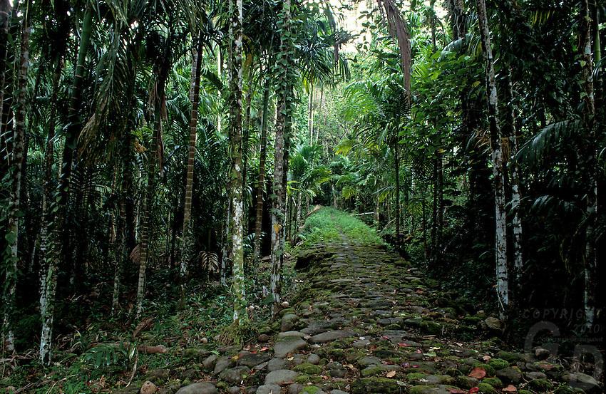 Traditional Stone Path Palau