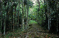 Traditional Stone Path Palau