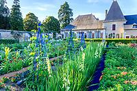 France, Loir-et-Cher (41), Cheverny, château de Cheverny, le jardin bouquetier, haricots, glaieuls, hémérocalles...