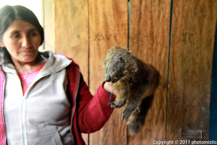 dried prize raposa