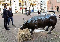 Nederland Amsterdam 2015 10 27 . De bronzen stier voor Beursplein 5 heeft van onbekenden een baal hooi gekregen.  Foto Berlinda van Dam / Hollandse Hoogte