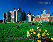 Tom Mackie, FLOWERS, photos, Felbrigg Hall in Spring, Norfolk, England, GBTM200228-2,#F# Garten, jardín