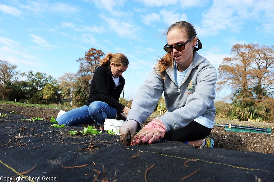 Tulane Newcomb students and alumni volunteer with Grow Dat