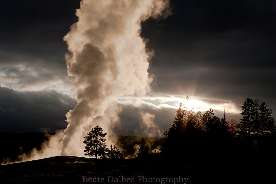 The sun briefly shines through the clouds illuminating Old Faithful, Yellowstone National Park