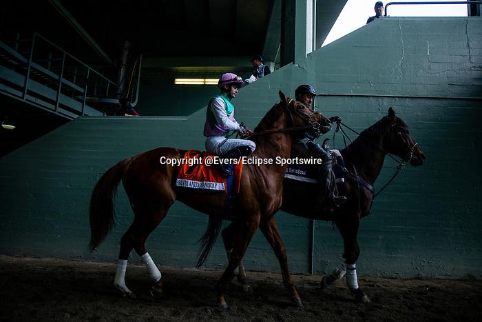 MAR 07: Hofburg and Flavien Prat before the Santa Anita Handicap at Santa Anita Park in Arcadia, California on March 7, 2020. Evers/Eclipse Sportswire/CSM