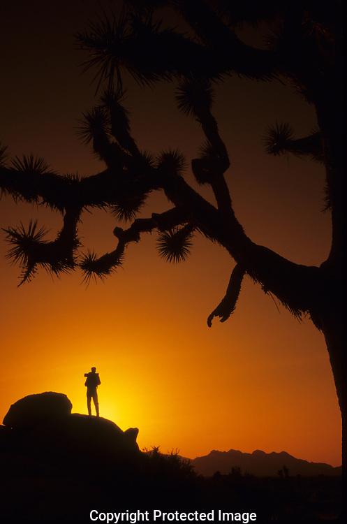 Adventure Sports &amp; Outdoor Lifestyles<br /> California