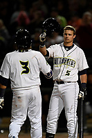 Second baseman Blake Tiberi (3) of the Columbia Fireflies is greeted by Matt Winaker (5) after hitting a home run in a game against the Augusta GreenJackets on Opening Day, Thursday, April 5, 2018, at Spirit Communications Park in Columbia, South Carolina. Columbia won, 4-2. (Tom Priddy/Four Seam Images)