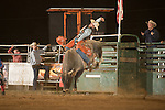SEBRA - Gordonsville, VA - 8.8.2015 - Bulls & Action