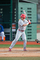 Jordan Winawer (27) of the Cornell Big Red at bat against the Seton Hall Pirates at The Ripken Experience on February 27, 2015 in Myrtle Beach, South Carolina.  The Pirates defeated the Big Red 3-0.  (Brian Westerholt/Four Seam Images)