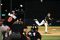 Masahiro Tanaka (Yankees),<br /> MARCH 28, 2014 - MLB :<br /> Pitcher Masahiro Tanaka of the New York Yankees gets Casey McGehee of the Miami Marlins to fly out to left in the fifth inning during a spring training baseball game at George M. Steinbrenner Field in Tampa, Florida, United States. (Photo by AFLO)