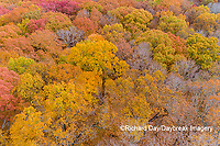 63876-02317 Aerial view of fall color trees Stephen A. Forbes State Park Marion Co. IL