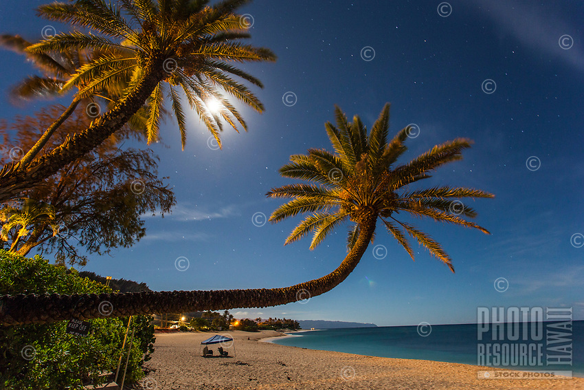 A long-exposure image of palm trees under full moon and stars at night, Sunset Beach, O'ahu, with beach chairs under a blue canopy in the distance.