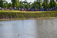 An alligator in the lake watches Tommy Fleetwood (ENG) walk past the pin on 17 during Round 4 of the Zurich Classic of New Orl, TPC Louisiana, Avondale, Louisiana, USA. 4/29/2018.<br /> Picture: Golffile | Ken Murray<br /> <br /> <br /> All photo usage must carry mandatory copyright credit (&copy; Golffile | Ken Murray)