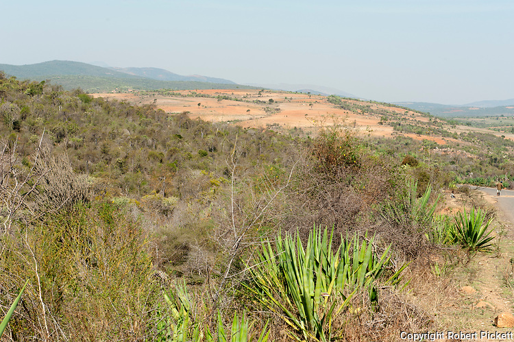 Shrubland and Farming, near Ifalty, Madagascar