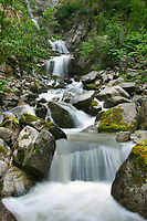 Mountain stream, Skagway, Alaska