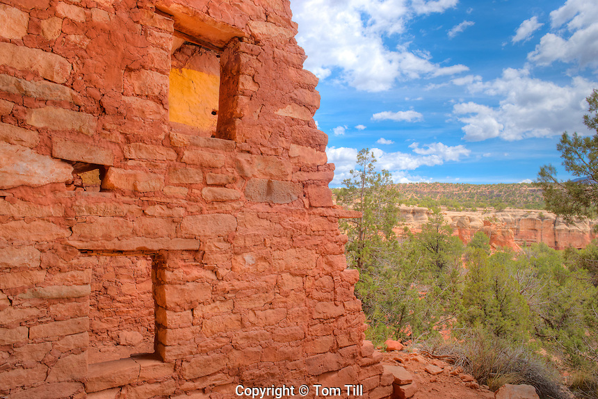 Ruin painted yellow, Canyons of Ancients National Monument, Colorado