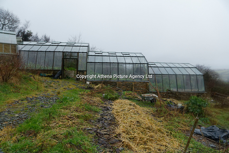 Pictured: The green house next to the destroyed house. Friday 05 January 2017<br /> Re: A house that was featured in Channel 4 programme Grand Designs has been destroyed in a fire. The house, owned by Simon and Jasmine Dale is located at the Lammas Eco village near Glandwr in west Wales, UK.