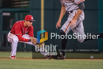 6 August 2016: Washington Nationals infielder Trea Turner in action against the San Francisco Giants at Nationals Park in Washington, DC. The Giants defeated the Nationals 7-1 to even their series at one game apiece. Mandatory Credit: Ed Wolfstein Photo *** RAW (NEF) Image File Available ***