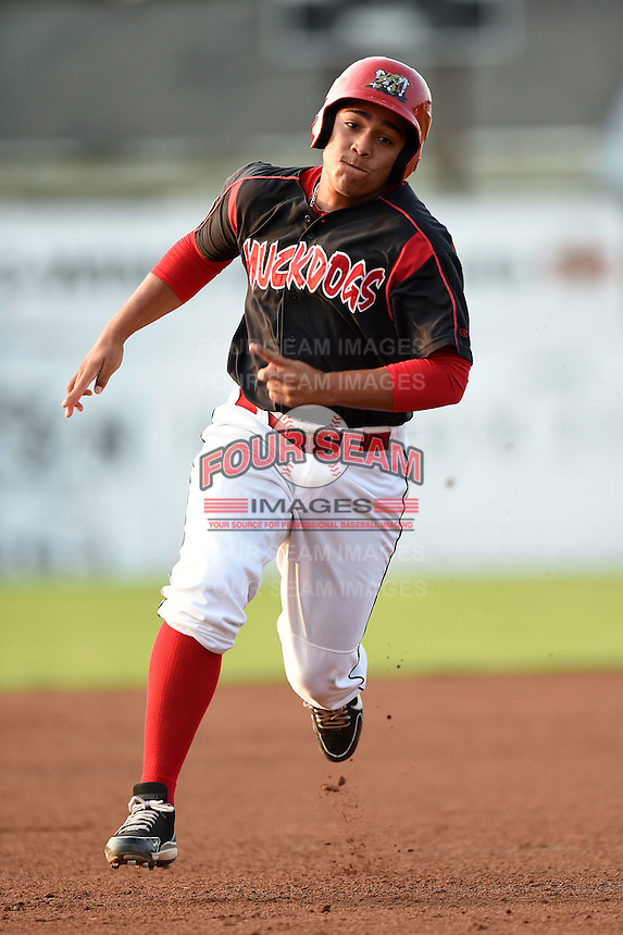 Batavia Muckdogs first baseman Carlos Duran (30) running the bases during a game against the Staten Island Yankees on August 6, 2014 at Dwyer Stadium in Batavia, New York.  Batavia defeated Staten Island 5-3.  (Mike Janes/Four Seam Images)