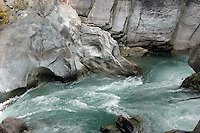 The Drinking Dragon. Howser Creek, West Kootenay, BC