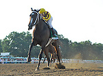 24 July 10:Rachel Alexandra and jockey Calvin Borel cruise to a win in the Ladies Secret Stakes at Monouth Park in Oceanport, New Jersey