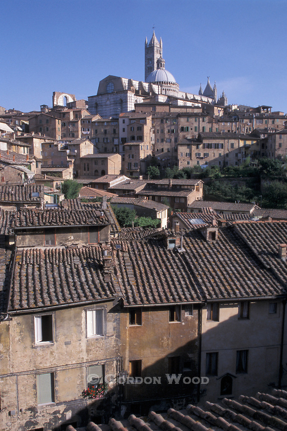 The Duomo over rooftops of Siena Italy