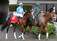 Get Stormy and Ramon Dominguez in the  Grade 1 Maker's 46 Mile at Keeneland Racecourse.  April 13, 2012.