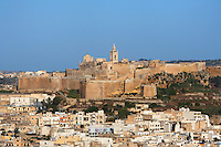 General view of the Citadella and town, Victoria, Gozo, Malta, pictured on June 2, 2008, in the afternoon. The Republic of Malta consists of seven islands in the Mediterranean Sea of which Malta, Gozo and Comino have been inhabited since c.5,200 BC. Nine of Malta's important historical monuments are UNESCO World Heritage Sites, including the Citadella, which has been a fortified city since the Bronze Age. Sited on a hill above Victoria (or Rabat) which dominates the surrounding countryside and coast, it was built up by the Phoenicians and then the Romans into a complex Acropolis. In the Middle Ages the Citadel was used as a refuge for the population by the Order of the Knights of St John. In 1551 the island was attacked by Muslims and the population taken away into slavery. Most of the remaining architecture is military although some fine examples of Maltese Baroque were constructed over the military settlement, including the 17th century Cathedral. Picture by Manuel Cohen.