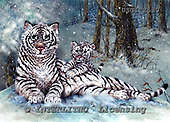 GIORDANO, CHRISTMAS ANIMALS, WEIHNACHTEN TIERE, NAVIDAD ANIMALES, paintings+++++,USGI2630,#XA#