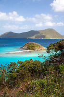 Ruins and views of Leinster Bay along the Johnny Horn Trail<br />